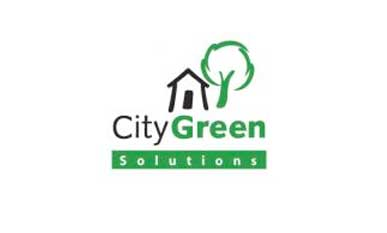 City Green Solution